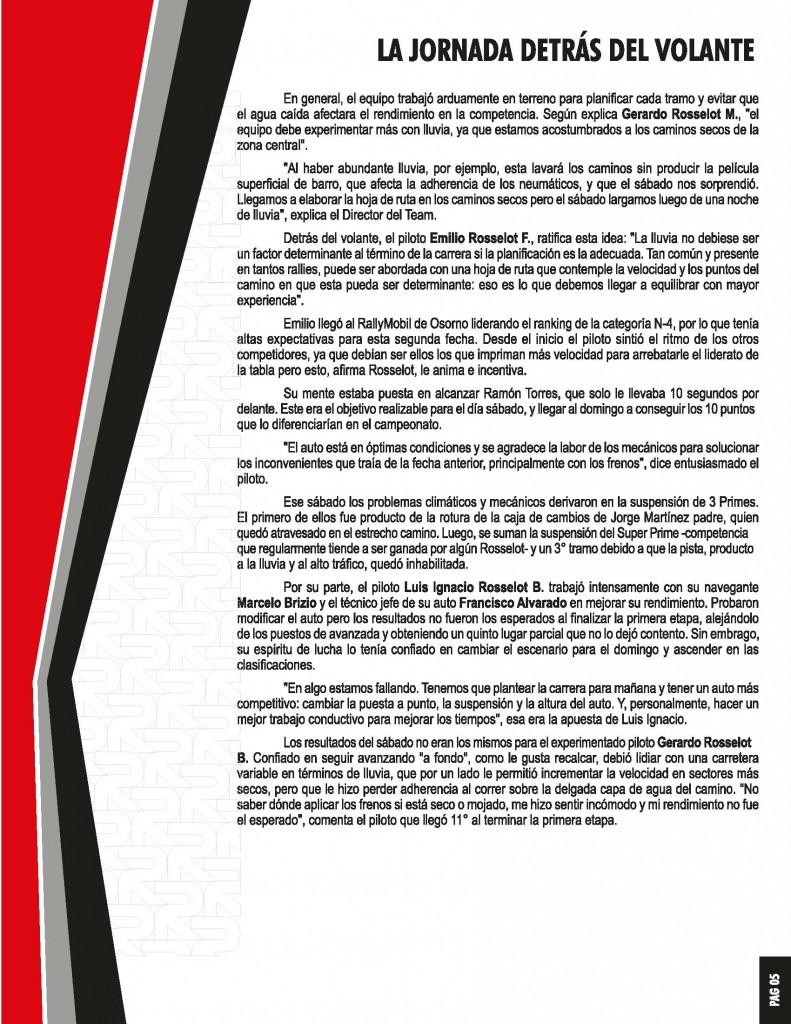 02informe_Osorno_Page_06