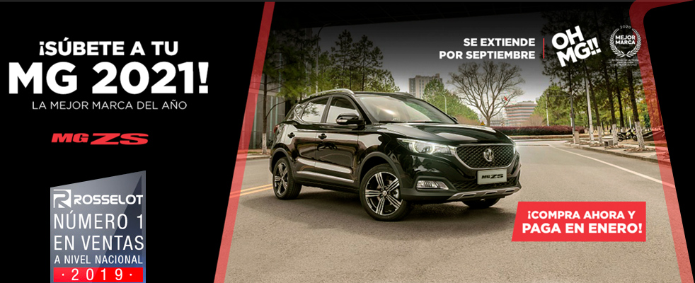 Banner MG ZS